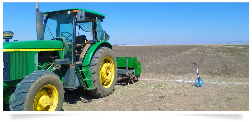crop_planting-maize_farming-agricultural_consulting.png